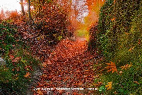 طبیعت شهرستان کازرون