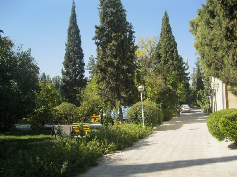 Nazar_garden