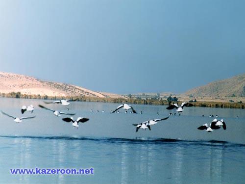 Parishan Lake(Famour)
